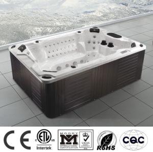 Piscina Aqua banheira hidro massagem EUA Painel Balboa banheira de acrílico (M-3303)