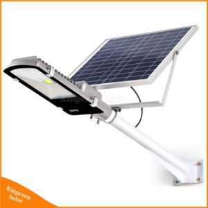 Venta directa de fábrica Professional 50W de Energía Solar de Alta Potencia Calle luz LED con 5 años de garantía