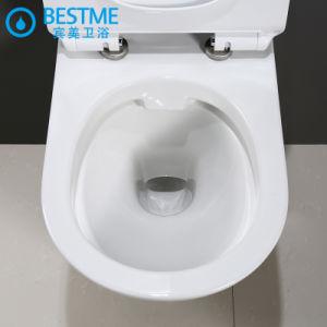 Loiça sanitária Wc penduradas na parede Taça higiénico Nano Wc vidrada Definir Bc-2376