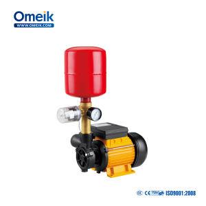 정원 수도 펌프를 위한 dB 시리즈 말초 펌프