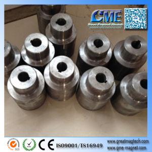 L'accoppiamento magnetico pompa accoppiamento magnetico costante dell'accoppiamento magnetico l'elettro