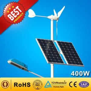 Гибридные солнечного ветра генератор для насоса/Streetlight/базовой станции (300W+100Вт)