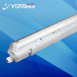 IP65 T8 Luz Impermeable de Aseguramiento de la Calidad 5 Años