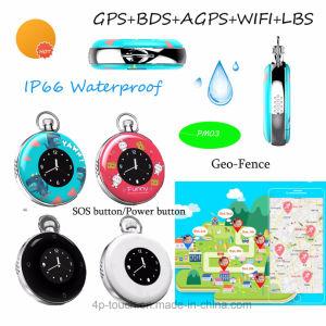 2017 Nieuwste Ontwikkeld GPS Volgend Apparaat met IP66 Waterdichte Pm03