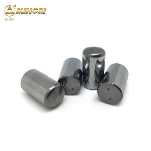 Os produtos da China Widia liga duros para Hpgr cimentada pernos de carboneto de tungsténio