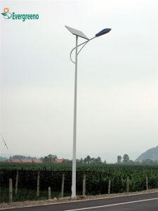 Calle la luz solar Soluciones para la licitación con un panel solar