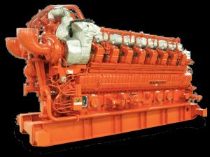 Generatore di potere diesel con il sistema di raffreddamento dell'acqua di mare