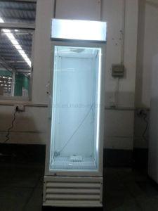 vetrina dritta del congelatore della medicina di prestazione superiore di disegno di modo