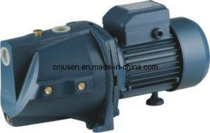 Pompa centrifuga elettrica Bomba De Agua Mjsw/10m