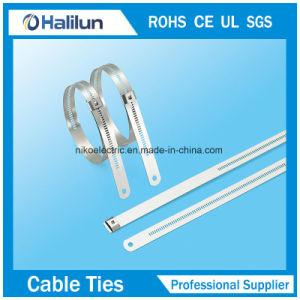 Strichleiter-einzelner Widerhaken-Verschluss-Kabelbinder des Metallss