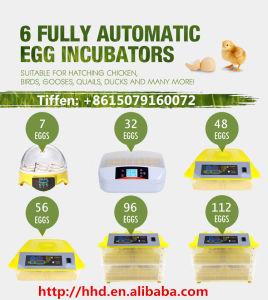 Usine d'oeufs de poulet d'alimentation Hhd incubateur pour la vente (YZ-32)