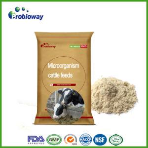 自然な有機性ミルクの牛家畜は付加的に酸っぱくなるエージェントのビタミンを入れる