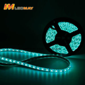 La serie de corte dos LED SMD5050 60 LEDs/M