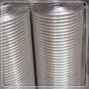 6X6 10/10高品質の溶接された金網
