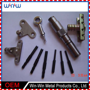 부속 CNC를 각인하는 관례는 돌았다 금속에 의하여 기계로 가공된 부분 (WW-MP016)를