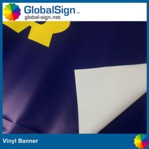 Bandiere esterne del vinile di stampa di Digitahi (LFG35/440)