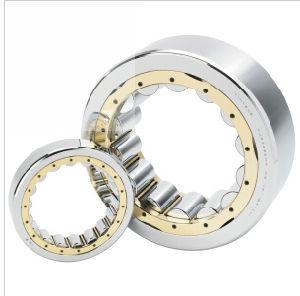 Une seule rangée de balle de rouleau patins roulements à rouleaux cylindriques (NU415)
