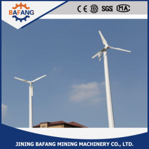 Qualitäts-Magnet 1 Kilowatt-Wind-Turbine