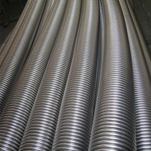 Tubo flessibile complicato personalizzato dell'acciaio inossidabile