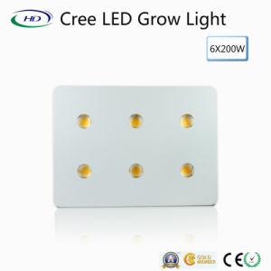 O diodo emissor de luz das microplaquetas 6*200W do CREE cresce claro para o cultivo comercial