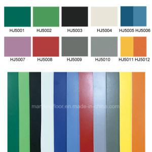 De Sporten die van pvc voor de Kleuterschool Stevige kleur-3mm Dikke Hj5005 vloeren van de Zaal van de Dans