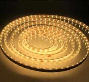 Luz flexible de la cuerda de la luz de tira del color LED RGB / White flexible con 60 * SMD5050 / 2835