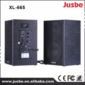 Звуковой ящик миниого диктора звуковой системы оптовой продажи 2.0