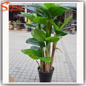 2015 China Artificial decorativos atacado Bonsai Árvore de plantas de banana
