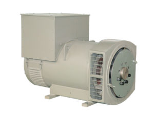ブラシレスAlternator From 22.5kVAへの1250kVA (JDG Series)