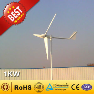 Vento Power Generator/Wind Turbine (1kw)