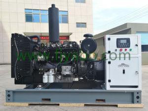 Conjunto do gerador de gás natural