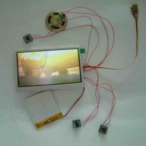 Жк-видеоадаптеров модулей с 256 МБ памяти