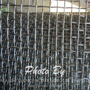 Maglia dello schermo dell'acciaio inossidabile per selezione e la filtrazione acide