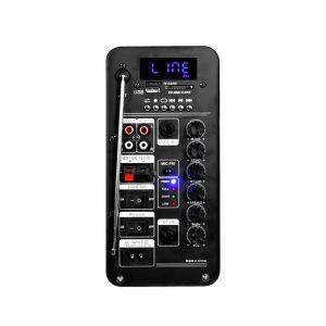 Temeisheng duais de 10 polegadas de alto-falantes Bluetooth portátil com rádio Caixa de Música Sem Fios com carrinho e F10-23 da Roda