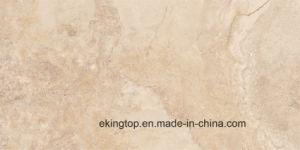 Bouwmateriaal van de Verglaasde Tegel van de Vloer van /Ceramic van het Porselein