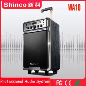 Shinco 10''nuevo estilo de moda altavoz Bluetooth Trolley con luz LED