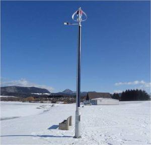 400W de volledige Permanente Generator van de Wind van de Magneet & het Lichte Systeem van de Zonnecel