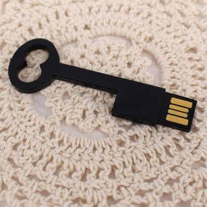 Дешевые Пластиковые формы ключа USB Flash Drive (UL-P015-01)
