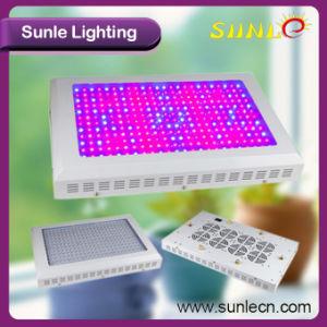 La Cina ha fatto il LED svilupparsi chiaro, PANNOCCHIA LED si sviluppa chiara (SLPT01)