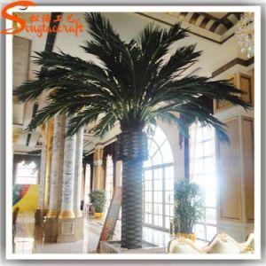 FiberglassのホテルDecorative Artificial Date Palm Made