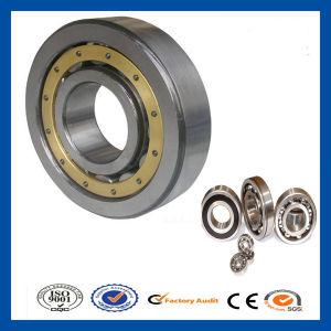 La plupart des prix concurrentiels du roulement à rouleaux cylindriques OEM 2304/2305/2306/2307/2308 Livraison rapide