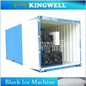 Pianta messa in recipienti del ghiaccio in pani da 5 tonnellate per le piante concrete