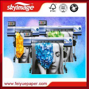 Tipografo di getto di inchiostro di Gran-Formato di Mimaki Vs-300I/taglierina con il rendimento elevato