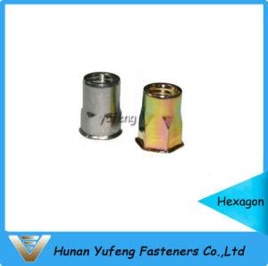 Noix principale réduite de rivet avec corps moleté/rond