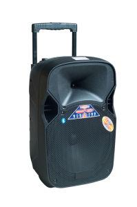 좋은 Price 12inch Battery Outdoor Speaker F87