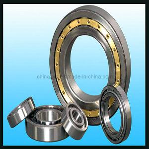 Qualitäts-Peilung-Hersteller Zys doppelte Reihen-zylinderförmige Rollenlager N1009k Nn3009k