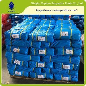 UV 보호 Top554를 가진 중국 PE 방수포가 중국 공장에 의하여 생성한다