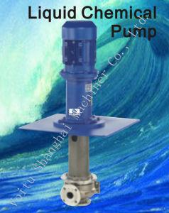Bomba de químicos líquidos/Tipo submersa bomba química