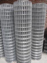 熱浸された電流を通された溶接された金網かAnpingの電流を通された溶接された金網または工場は溶接された金網に電流を通した