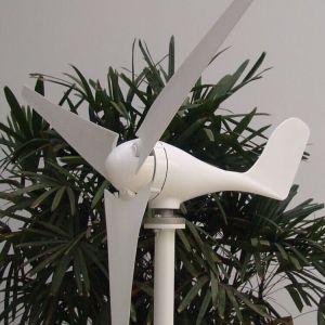 500W 24VCC génératrice éolienne de l'eau potable + Contrôleur de charge hybride avec d'autres 200W capacité solaire